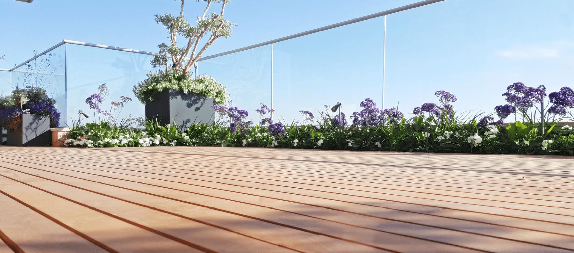 דק בהיר בגינת גג מעוצבת