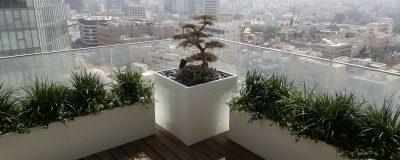 אדניות לבנות בגינת גג