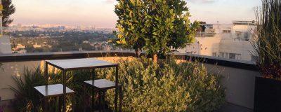 עץ מוקף בשיח פרחוני על גינת הגג