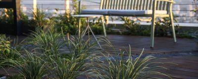 שילוב צמחים במרפסת