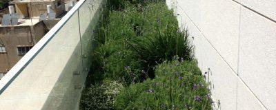 ניצול שטח מרבי לשתילת צמחים ופרחים במרפסת
