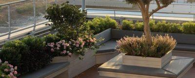 אדניות מעוצבות וצמחיה בגינה על הגג