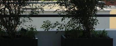 מרפסת היקפית בתל אביב