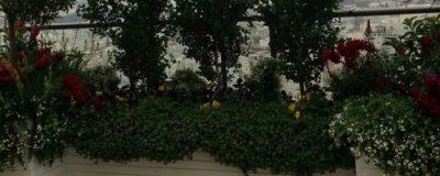 עיצוב מרפסת גדולה – רמת גן