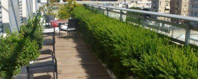 צמחייה מעוצבת בגינת מרפסת בשילוב דק
