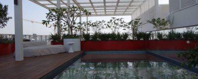 בריכת שיקוף מיוחדת עבור הגינה המעוצבת על גג בניין