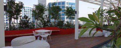 גינת גג עם מקומות ישיבה רבים ועציצים ירוקים