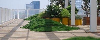 צמחייה בגינת גג בניין אקרו נדל