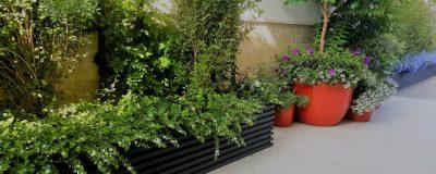 כדים ואדניות במרפסת ירוקה